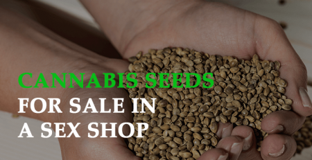 Cannabis Seeds for Sale in a Sex Shop: Unlimited Prospective Gains
