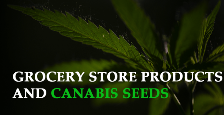 selling cannabis seeds