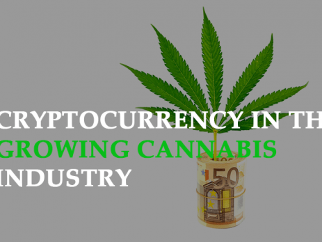 growing cannabis industry