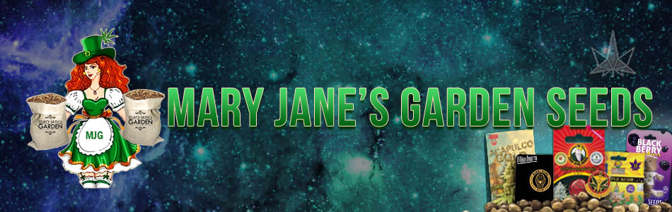 Mary Janes Garden Seeds