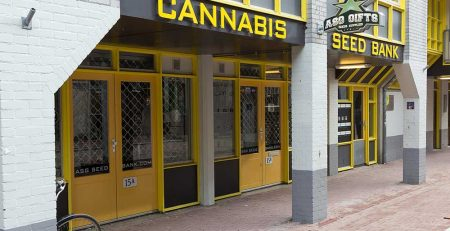 Can You Trust Online Cannabis Seed Banks 1